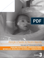 Livro - Atenção à Saúde do Recém-Nascido - v.3