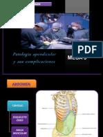 Patología apendicular