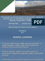 Exemplu2.Metoda Rojanschi Tarnave 2011