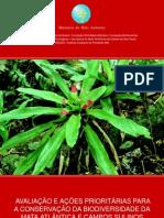Áreas Prioritarias de Conservação - Mata Atlântica e Pampa