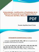 Procedimientos Especiales Lopnna. 2do. Cohorte. Junio 2011