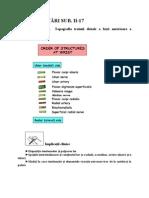 17. Santul Pulsului. Tabachera Anatomica. Topografia Treimii Distale a Fetei Anterioare a Antebratului