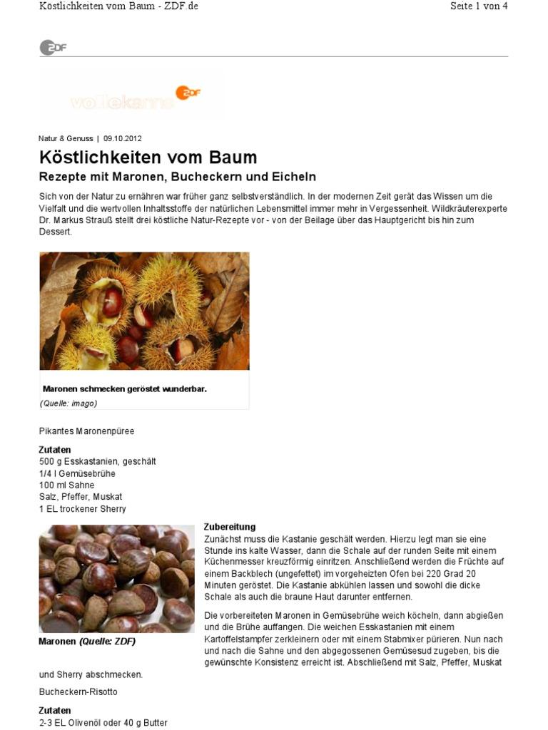 Rezepte Mit Maronen Bucheckern Und Eicheln 2pdf