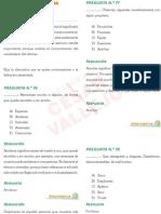 Razonamiento Verbal Cv Uni 2012-i