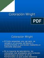03a  ColoraciónWright