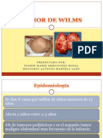 Tumor de Wilms