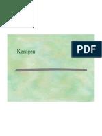 3 -kerogen