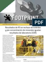 GekkoFootprintNewsletter2011 Spanish[1]