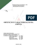 Relatorio Da Amonia