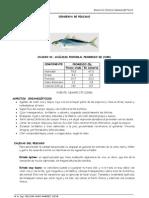 Conserva de Pescado