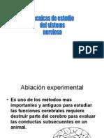28988962 Metodos de Investigacion Del Sistema Nervioso