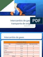 3. Fisiología pulmonar- intercambio gaseoso y transporte de oxigeno.pptx