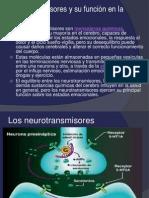 Neurotransmisores y su función en la conducta