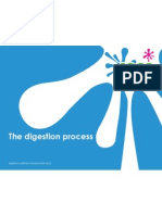 the-digestion-process-foundation