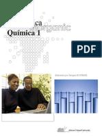 48337842-Quimica-Inorganica-1