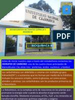 Clas.diaposit. CARBOHIDRA- Forest. Bquim II-12