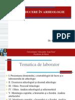 Introducere in Arheologie 2013. Tematica Final 18.02.2012