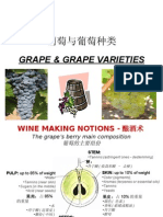 Grape & Grape Varieties