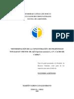 Determinacion de La Concentracion de Polifenoles Totales en Frutos de Capsicum Annuum