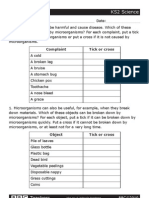 Bbc Teachers Ks2 Science Worksheet Microorganisms