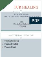 Fraktur Healing