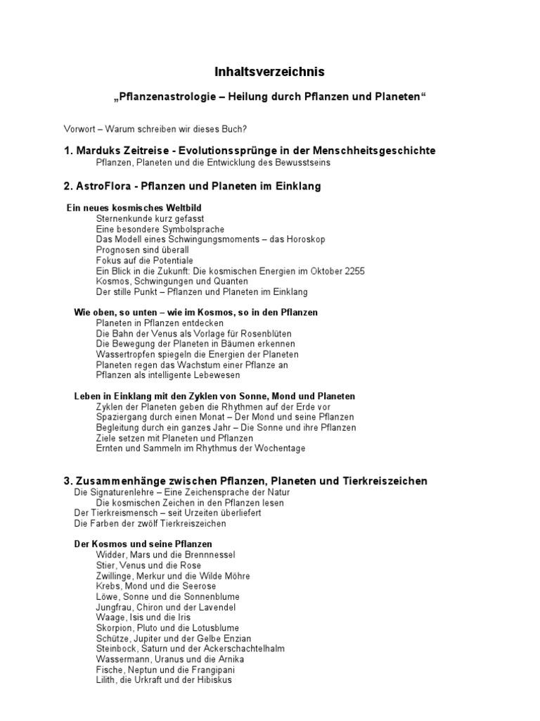 Ausgezeichnet Vorlage Für Einen Buchbericht Galerie - Bilder für ...
