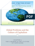 Global Problems and the Culture of Capitalism IR 204