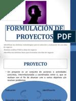 L 7  FODA-Formulación de Proyectos