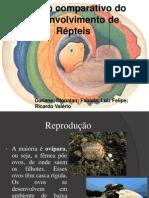 Embriologia dos Repteis.ppt