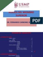 Miembro Superior - Huesos y Articulaciones