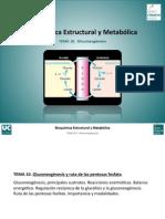 Tema 10. Gluconeogenesis