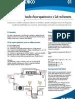 boletim_ago08.pdf
