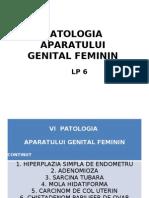 Patologie Genital Feminin 6