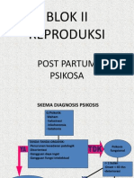 Post Partum Psikosa