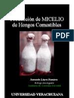 Manual Para La Produccion de MICELIO de Ongos Comestibles