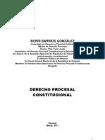 Derecho Procesal Constitucional Boris Barrios Gonzalez