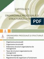 Mg Cap5 organizarea procesuala si structurala a firmei