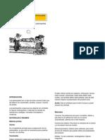 Elaboracion de Palanquetas