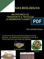MEMBRANA BIOLOGICAS