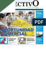 PDFEFEC_15012013_PREFIL20130115_0002