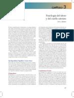 anatomia y fisiologia del utero.pdf