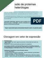Expressão_de_proteínas_heterólogas