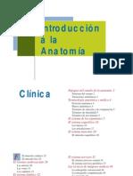 Anatomia Humana Compendio