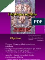 05 Psicologia Cognitiva