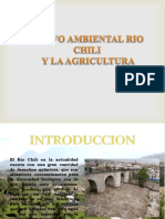 Pasivo Ambiental Rio Chili