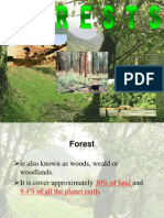 FOREST.PPT