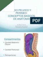 Conceptos Basicos de Anatomia