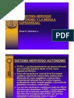 Sistema Nervioso Autonomo y La Medula Suprarrenal