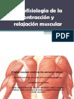Histofisiología de la contracción y relajación muscular