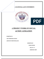 Social Interest Litigation